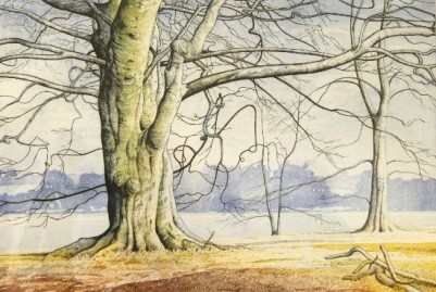 Beeches at Bretton Lakes by Simon Bull